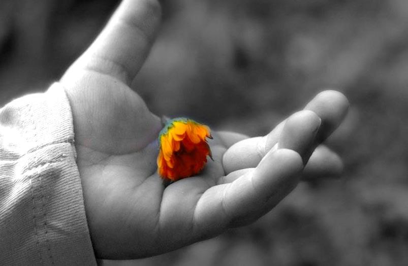 hand-flower2.jpg